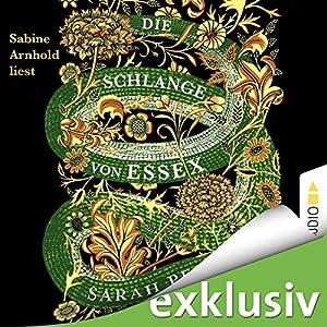 Die Schlange von Essex Hörbuch