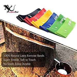 """Resistance Loop Bands [Set of 6], LizardMad Natural Latex Fitness Exercise Bands for Workout, Pilates, Yoga, Rehab or Physical Therapy with Instructional Booklet, eBook (12"""" X 2"""", Five Stretch Levels)"""