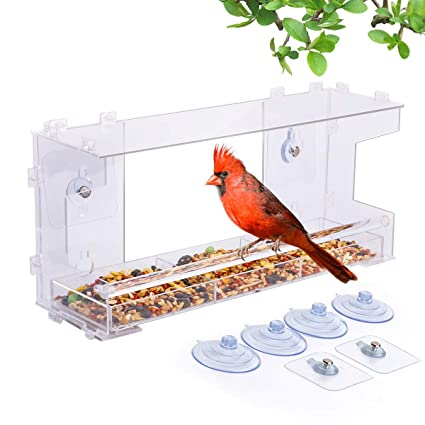 Amazon Com Best Bird Feeder For Window 100 Acrylic Diy Never