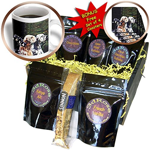 Dogs English Setter - English Setter - Coffee Gift Baskets - Coffee Gift Basket (cgb_712_1)