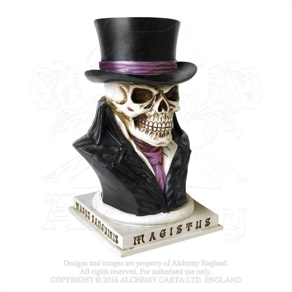 Amazon com: Alchemy Party Decorations Count Magistus Gentleman of