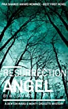 Resurrection Angel (A Denton Ward and Monty Crocetti Mystery Book 1)