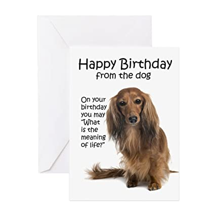 Amazon Cafepress Funny Dachshund Birthday Greeting Card