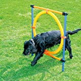 PAWISE Pet Dogs Outdoor Games Agility Exercise Training Equipment Jumping Ring