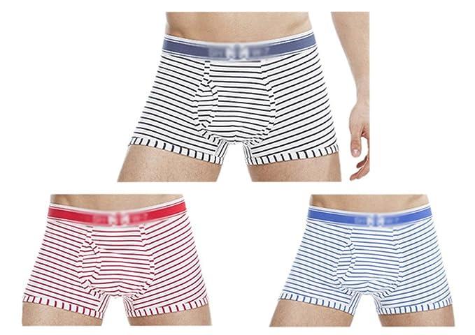 Anguang Unisexo Ropa interior Mujer y Hombres Calzoncillos Íntimos Pantalones cortos Boxer Bragas 3 Colores XL