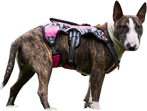 Qchengsan Chaleco táctico Perro, con arnés para Perro, 3 m ...
