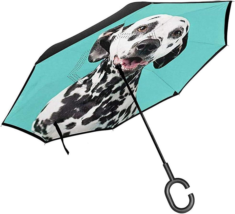 Paraguas invertido de Doble Capa con Mango en Forma de C, Paraguas Unisex con protección UV a Prueba de Viento-Lindo Perro dálmata