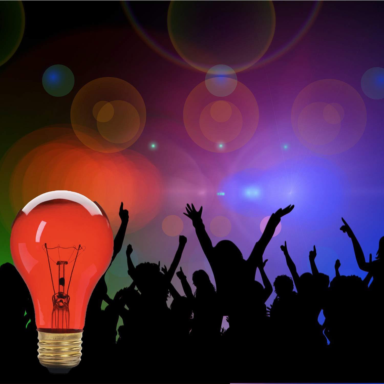 E26 Medium Base 2 Pack Xtricity A19 Incandescent Colored Light Bulb 60W 130V Green