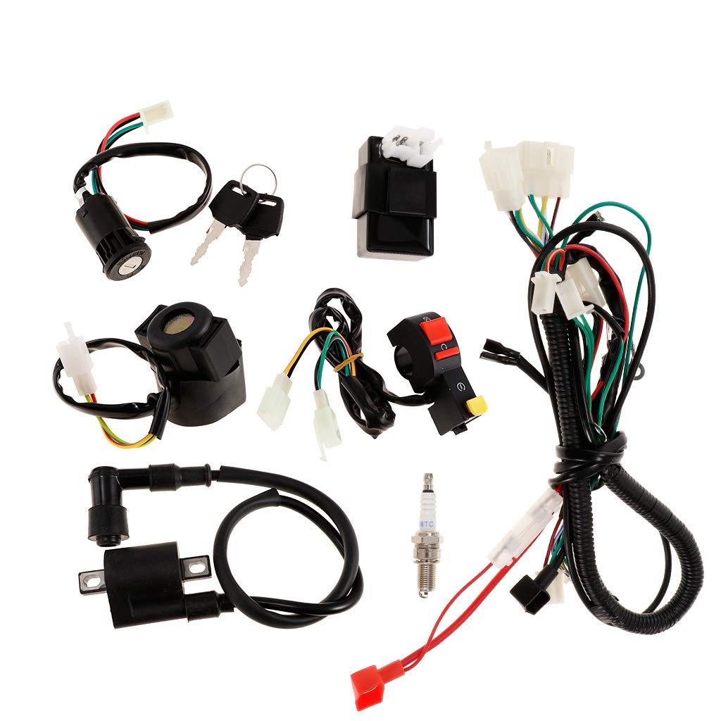 Schema Elettrico Bobina Di Accensione : Montaggio accensione elettronica parmakit elaborazioni e tecnica