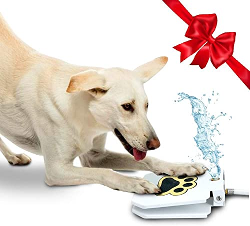 Outdoor-Dog-Drinking-Water-Fountain-Step-On