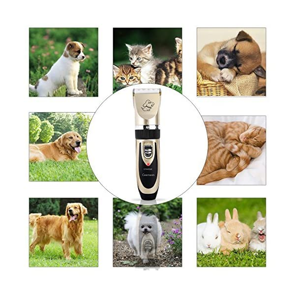 Ceenwes-Dog-Clippers-Low-Noise-Pet-Clippers-Rechargeable-Dog-Trimmer-Cordless-Pet-Grooming-Tool-Professional-Dog-Hair-Trimmer-with-Comb-Guides-Scissors-Nail-Kits-for-Dogs-Cats-Other-Hairy-Animals