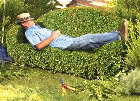 Man On Topiary Couch Father's Day Card (Topiary Card)