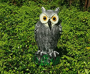 Amazon.com : SCHOME Small Scarecrow Fake Owl Decoy   Garden Defense Owl    Bird Pest Deterrent Repellent Scare Mice, Rat, Pigeon Aways : Garden U0026  Outdoor