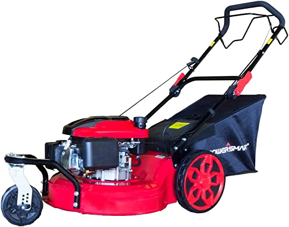 Amazon.com: PowerSmart DB8620 20inch 3-in-1 196cc gas auto ...
