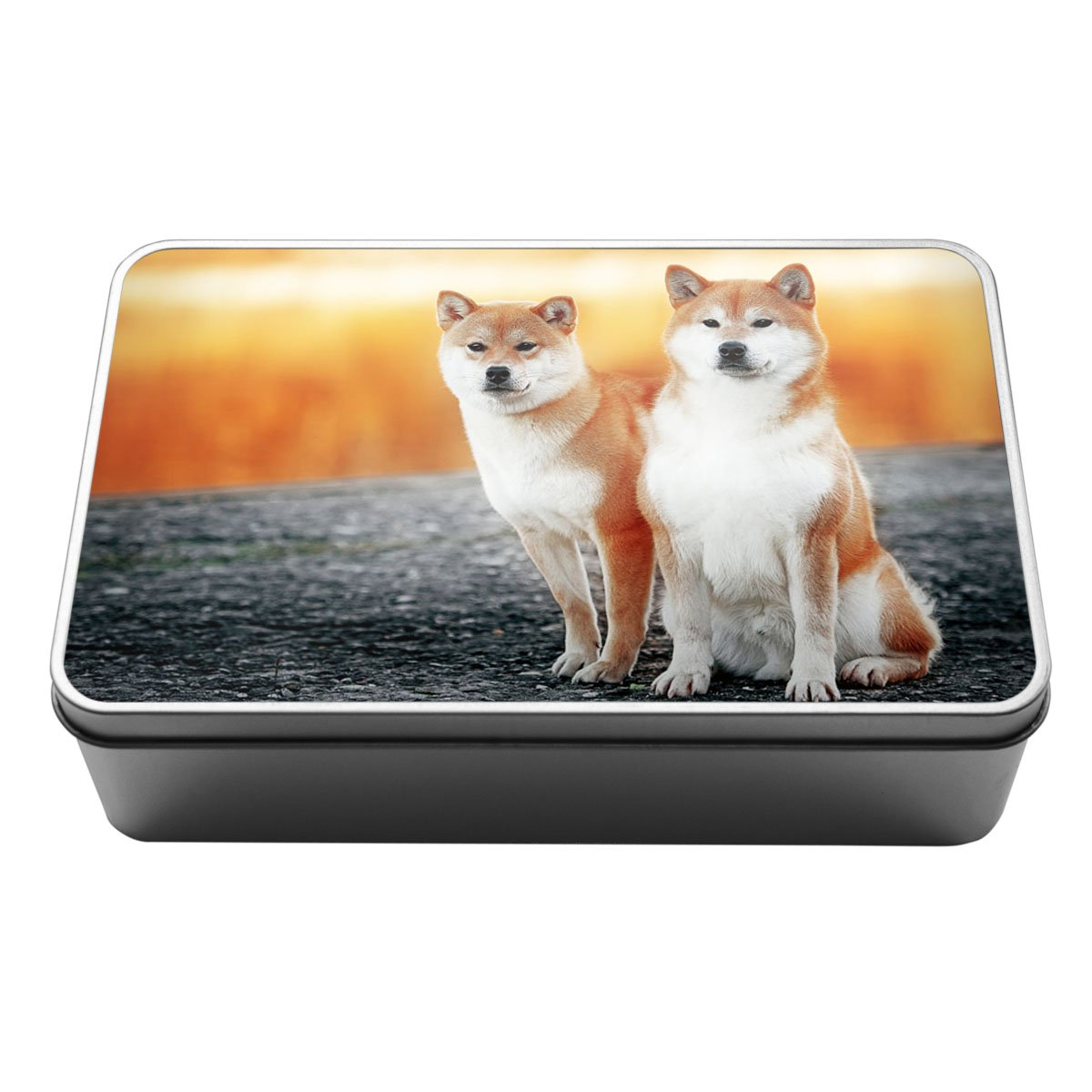 Duke Gifts Cavalier King Charles Spaniel Animal Metal Storage Tin Box 071