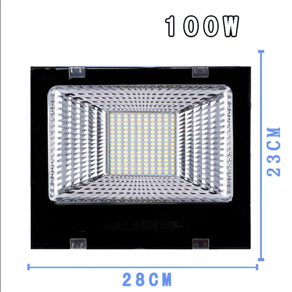 Csndice Home Faretto Led Esterno,Faretti a LED per l'illuminazione del posto di lavoro Super Bright Outdoor Impermeabile Luce di sicurezza IP65 66 (dimensioni   100W)