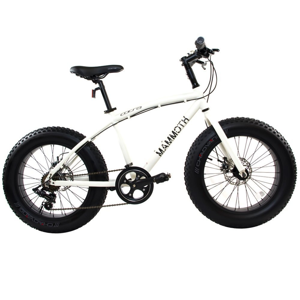 Alton Corsa Mammoth-S 20 Wheel 7-Speed Alloy Frame Bike White 14/One Size [並行輸入品] B075JZSLKZ