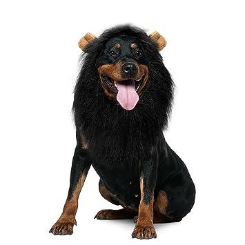 Wanruisi® Peluca de león para perro, para disfraz de perro, vestido, peluca