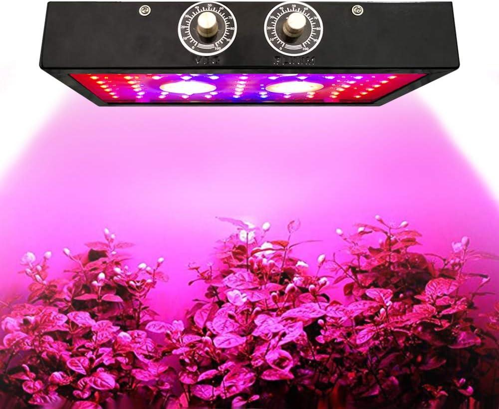 Premium 1500W LED Grow Light Full Spectrum, Double Chips UV IR LED Grow Plant Lámpara para plantas de interior Vegetales y flores con cadena de margaritas