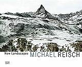 Michael Reisch: New Landscapes