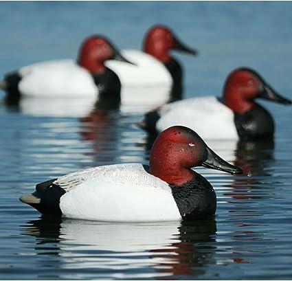 Greenhead Gear Over-Size Duck Decoy,Pintails,1//2 Dozen
