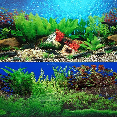 9088 20 x 48 Fish Tank Background 2 Sided River Bed & Lake Background Aquarium by New (36x24 Aquarium Background)