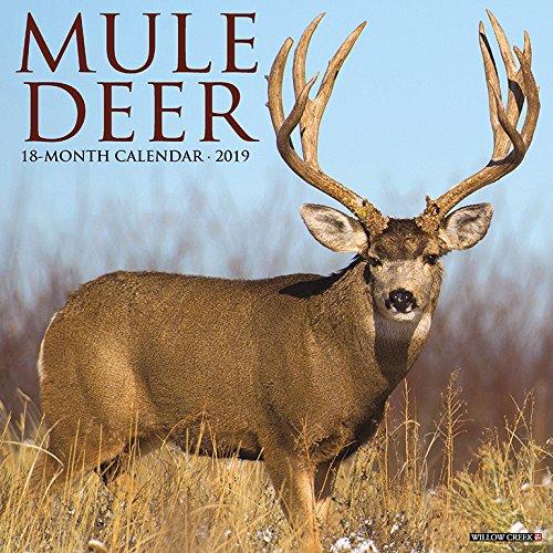 Mule Deer 2019 Wall Calendar -