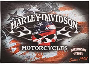Harley-Davidson Flaming Skull Americana Estate Flag
