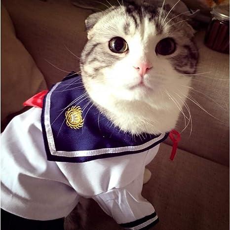 TYJY Ropa para Gatos De La Armada Traje De Mascotas Uniformes De Marinero Vestirse Falda Ropa De Algodón Ropa para El Gato Ropa: Amazon.es: Productos para mascotas