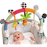 bright starts take 39 n shake frog car seat toys baby. Black Bedroom Furniture Sets. Home Design Ideas