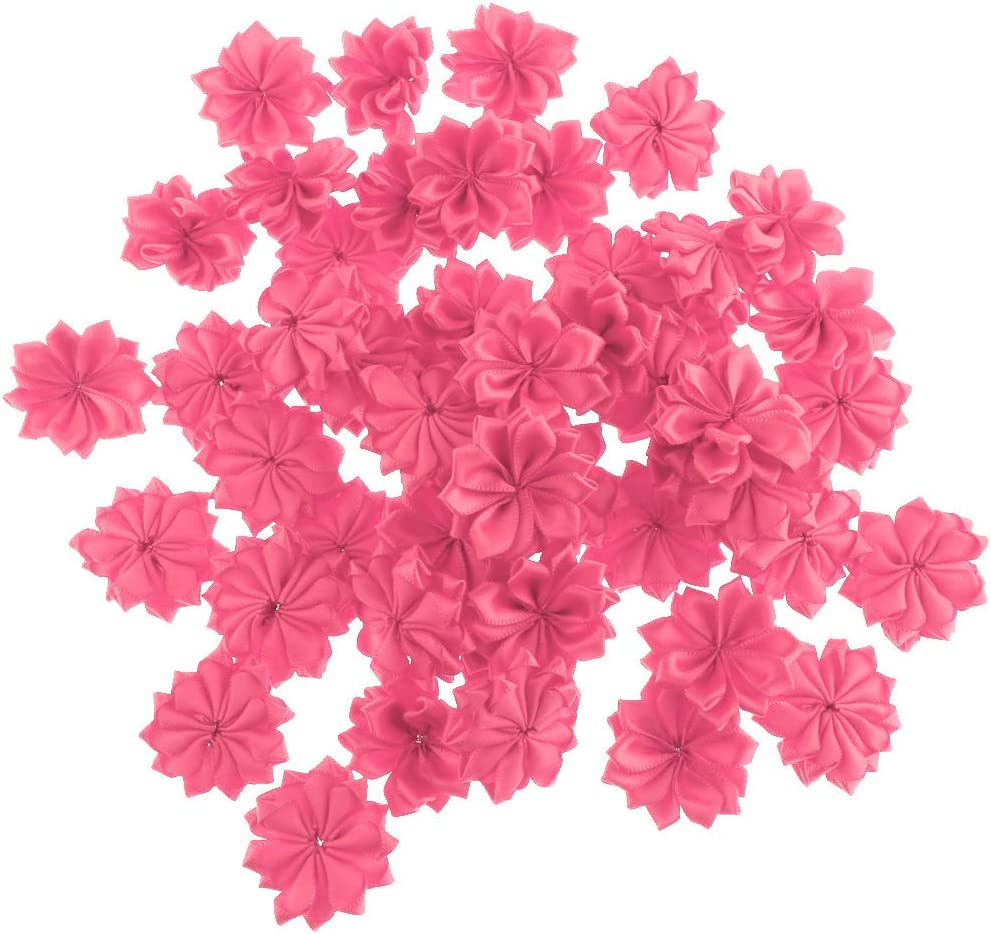 B Baosity 4cm 50pcs Ribbon Rose Flowers Kit For Hairbow DIY Crafts Clothing with 16 Petals as described Champagne