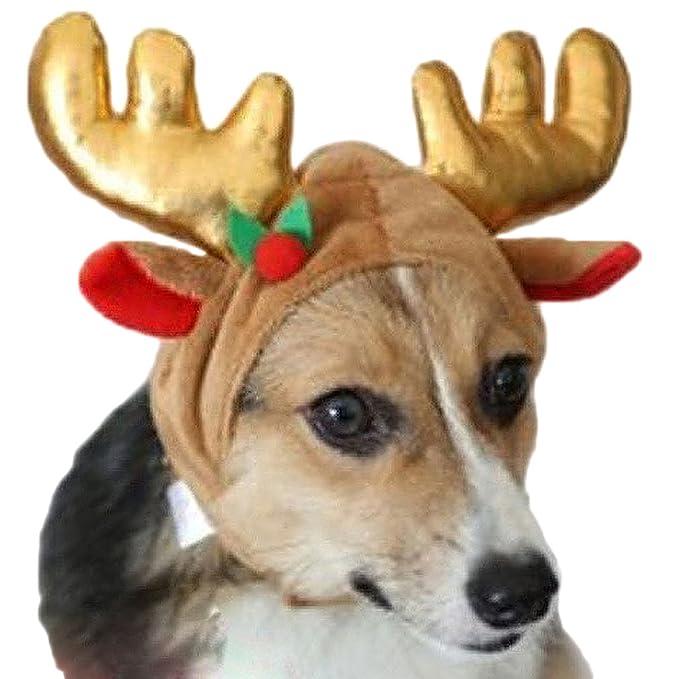 AIYUE® Sombrero Navidad Gorro Reno Cuernos Alce para Perro Gato Mascota Disfraz Caliente Decoración Fiesta Otoño Invierno: Amazon.es: Ropa y accesorios