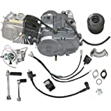 Amazon com: Zongshen 190cc Pit bike engine, Keihine PE28 carb, and