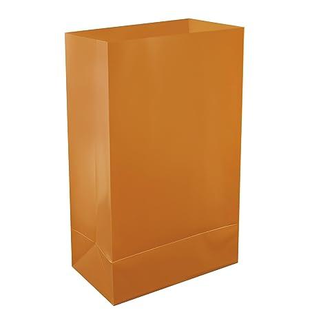 Amazon.com: LumaBase 501100 – 100 Count Luminaria bolsas de ...