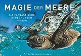 Die magische Welt der Meere in einem Tischaufsteller. Mit faszinierenden Unterwasserbildern und einmaligen Aufnahmen des Lebensraums Tiefsee durch das Jahr. Mit Fotografien von Solvin Zankl