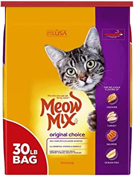 Best Dry Cat Food Amazon