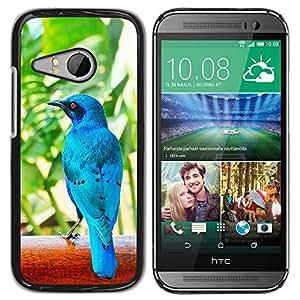 Paccase / SLIM PC / Aliminium Casa Carcasa Funda Case Cover para - Blue Tropical Bird Nature Rainforest - HTC ONE MINI 2 / M8 MINI