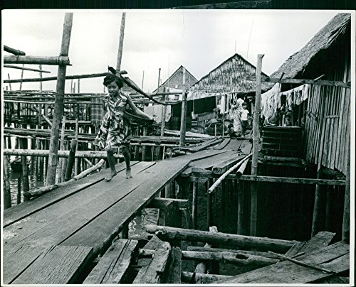 Plank Bridge - 8
