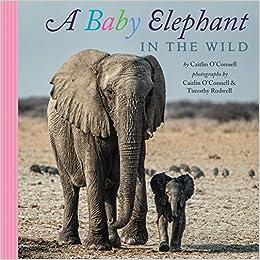 Descargar PDF A Baby Elephant In The Wild