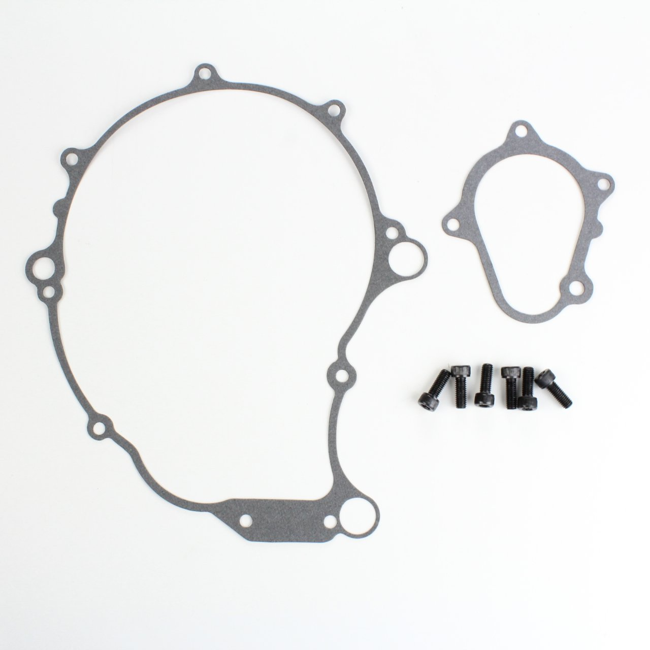 Crankcase Gaskets & Starter Clutch Screw Kit Set Combo 2001-2005 Yamaha Raptor 660R