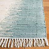 Safavieh Montauk Collection MTK751A Handmade Stripe