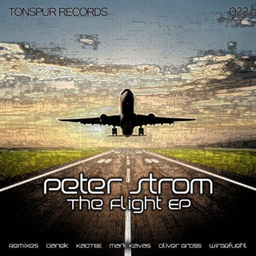 The Flight (Daneks Micro Dub Remix)