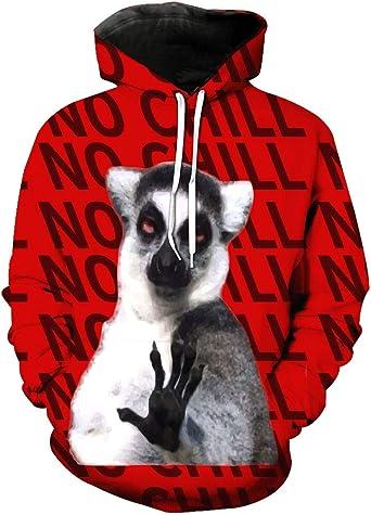 Small Hoodie Raccoon Boys Casual Soft Comfortable Sweatshirts Pocket Hoodies
