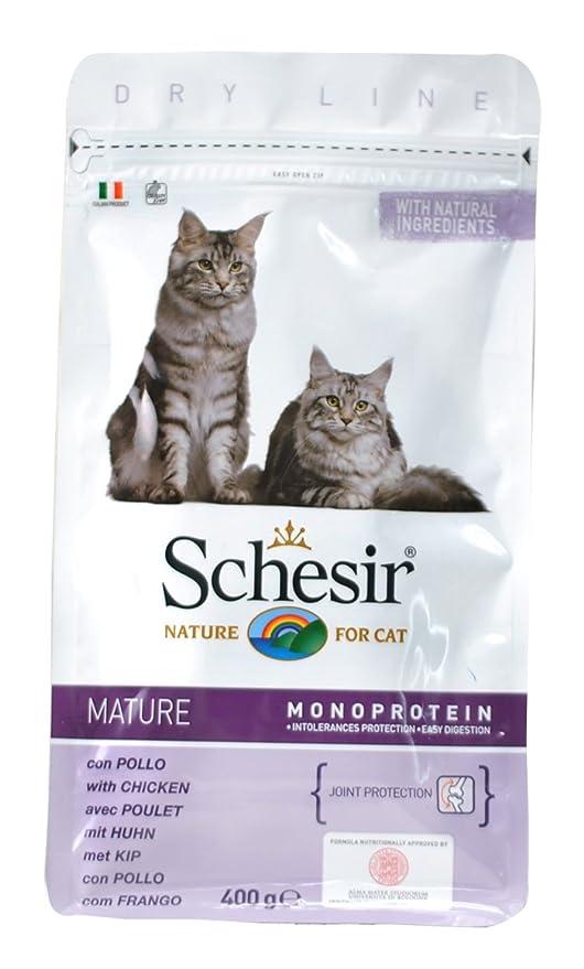 Schesir pienso Gato 400 gr Senior: Amazon.es: Productos para mascotas