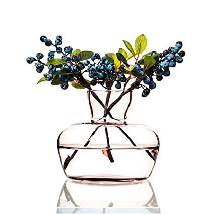 Astounding Amazon Com Dei Qi Transparent Hyacinth Glass Vase Simple Best Image Libraries Sapebelowcountryjoecom