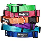 Blueberry Pet 3/8-Inch Classic Solid Basic Polyester Nylon Puppy Dog Collar, X-Small, Medium Turquoise