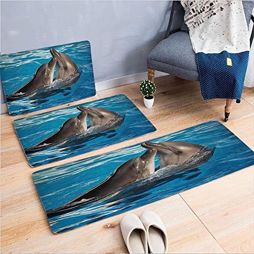 3 Piece Non-Slip Doormat 3d print for Door mat living room kitchen absorbent kitchen mat,Dancing in the Pool Animal Family Tenderness,15.7