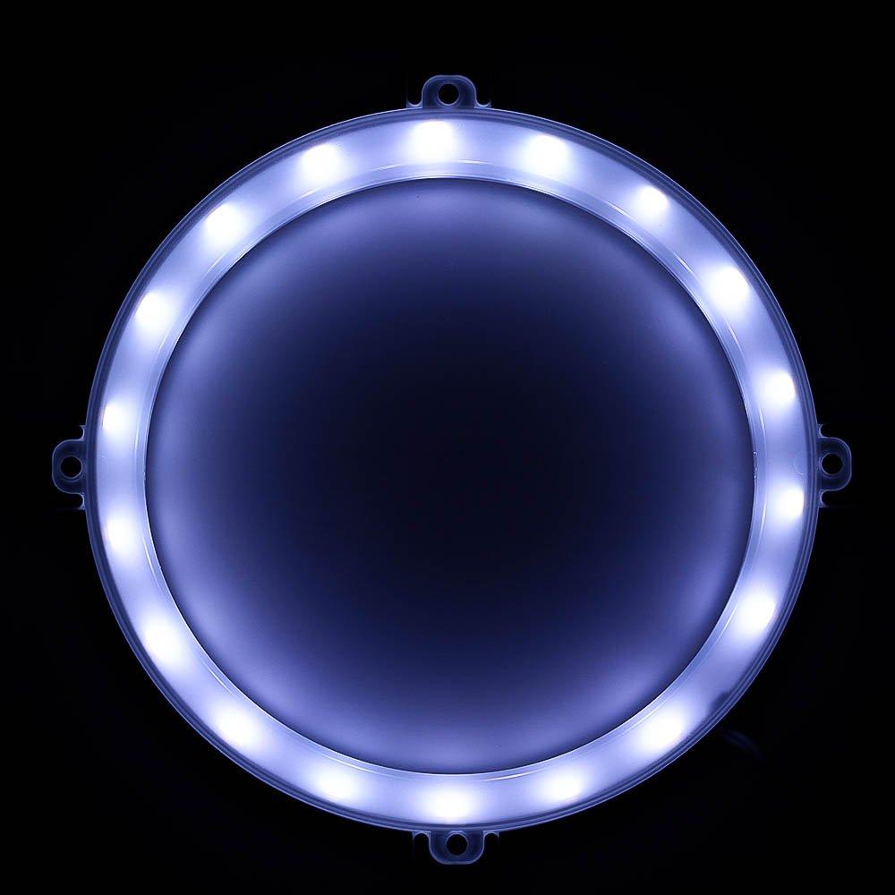 Blinngo Cornhole LED Lights, Ultra Bright Standard Cornhole Night Light for Family Backyard Bean Bag Toss Cornhole Game, Four Color Options, Long-Lasting Over 72 Hours, 2 Set (Cold White) by Blinngo