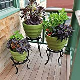 Achla Designs Patio Flower Pot Plant Stand, 8-in H