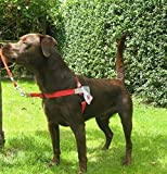 Anti Pull Front Leading Harness RED fits dogs weighing 55 - 120 Llb (25 - 54 kg) Girth Size 26 - 39 ins ( 66 - 99 cm )